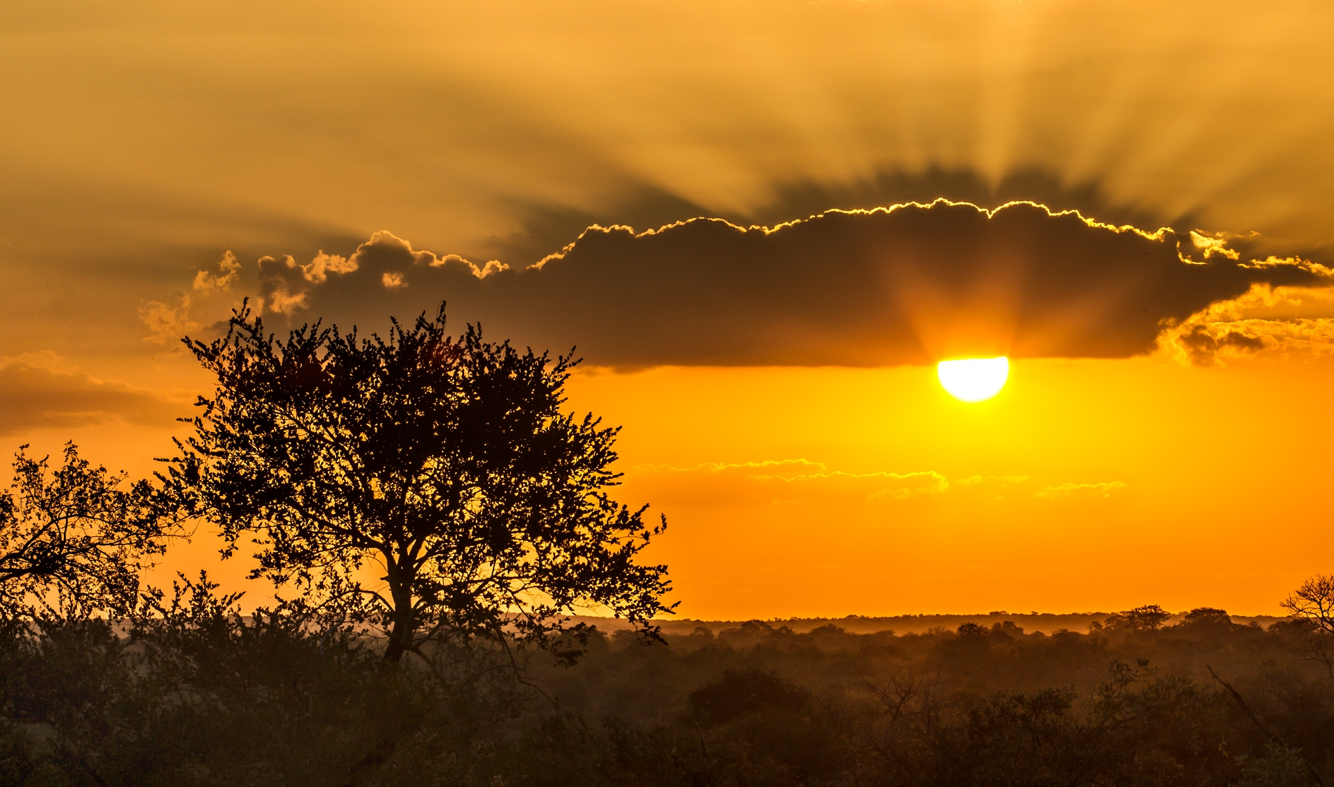 A beautiful sunset overlooks the Botswana bush