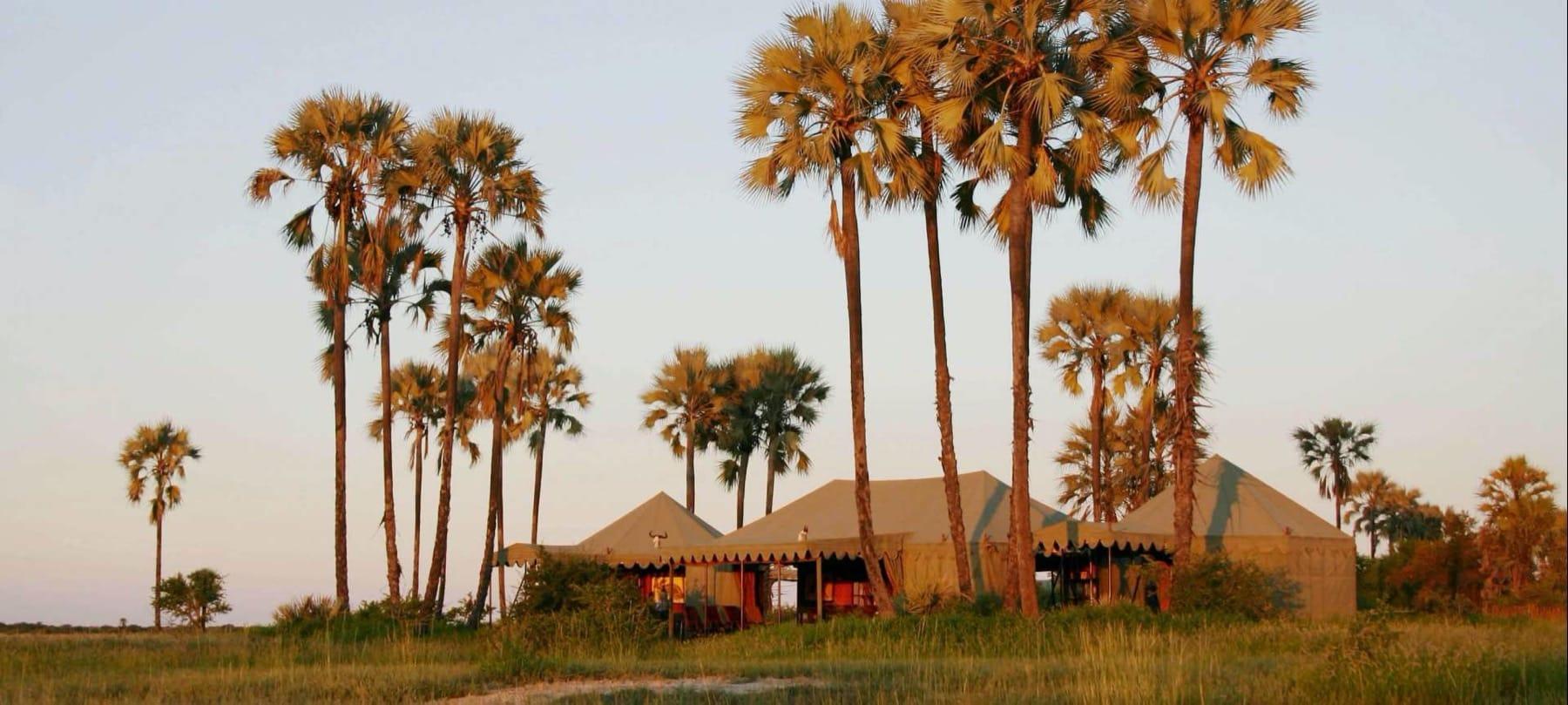 Jack's Camp in Botswana