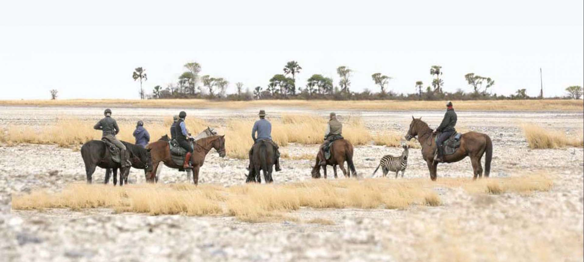 Horse riding expeditions are a great way to view wildlife