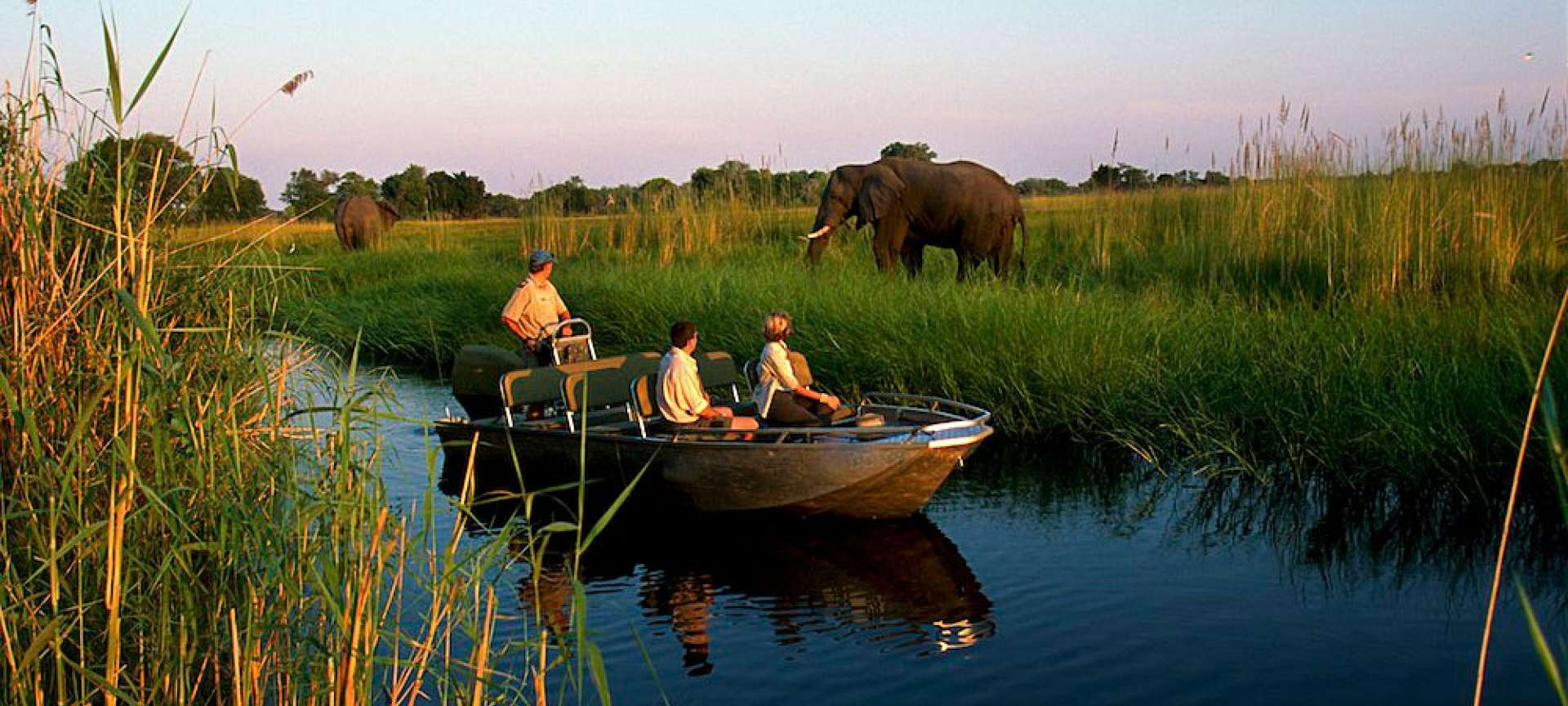 Elephant herds are plentiful in Botswana
