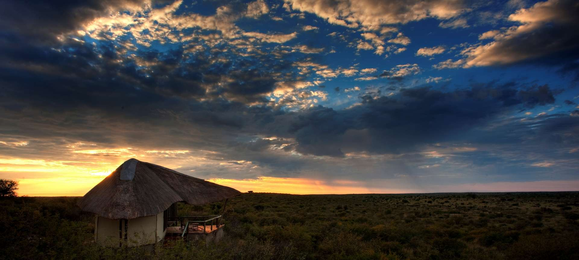 The Kalahari is a mystical attraction filled with life