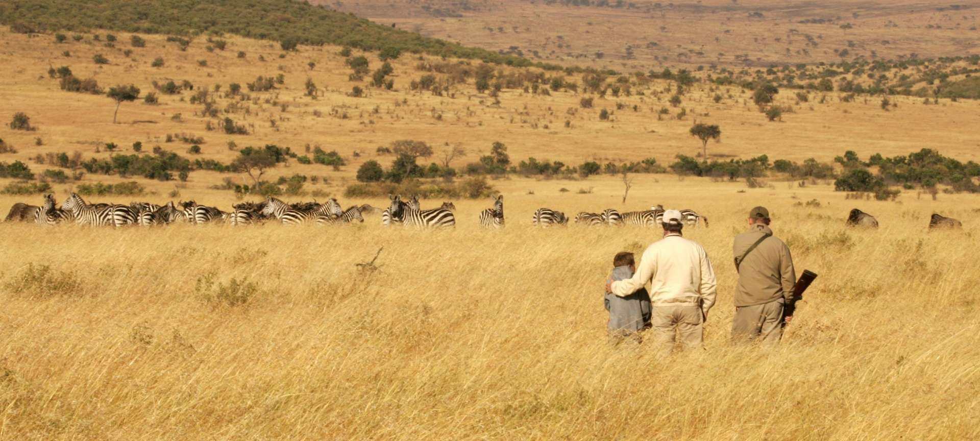 Guided safaris are ideal for families
