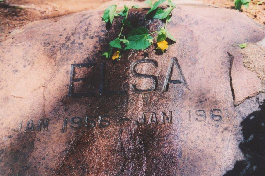 Paul D_Elsas Grave_Kenya