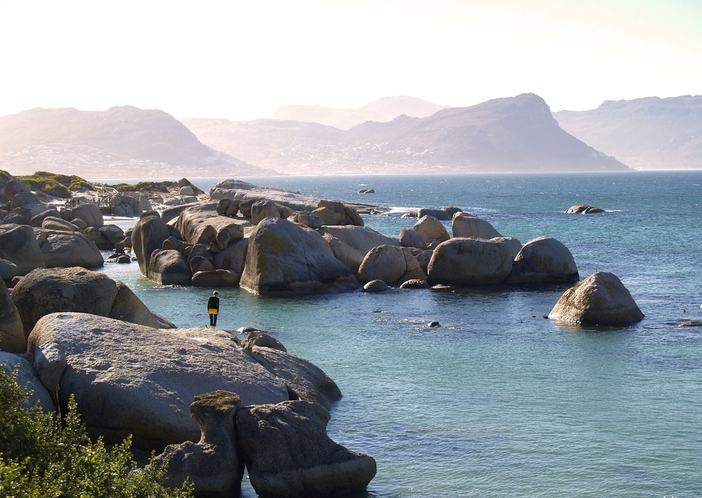 There is a small granite island in the bay (not discernible in the image above) called Seal Island), which is one of the main breeding sites for the Cape Fur seal and attracts the Great white sharks.