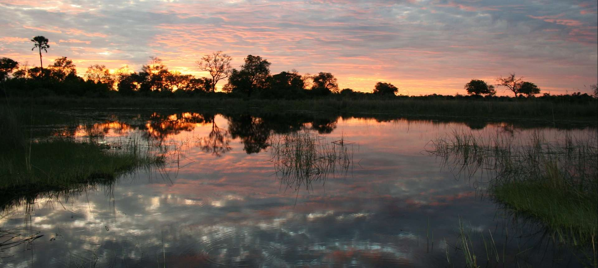 The Okavango Delta is a magical place