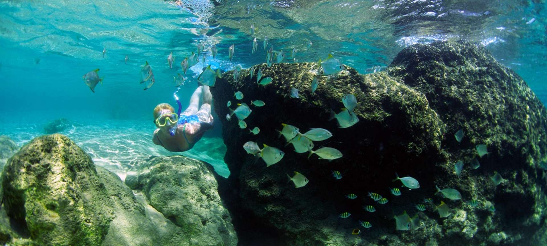 KwaZulu-Natal_iSimangaliso snorkelling