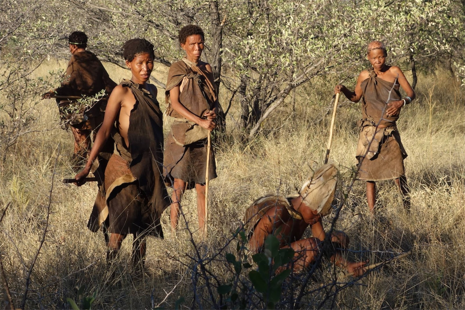 South African cultures and their nuances_San Bushmen
