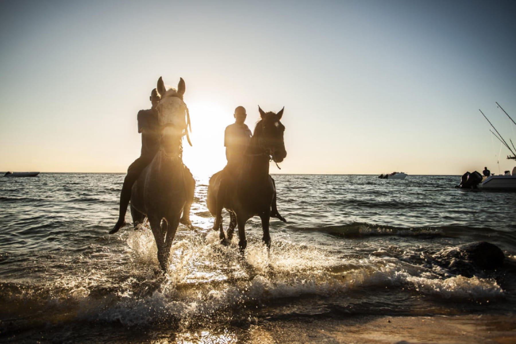 anantara bazaruto island resort horse riding