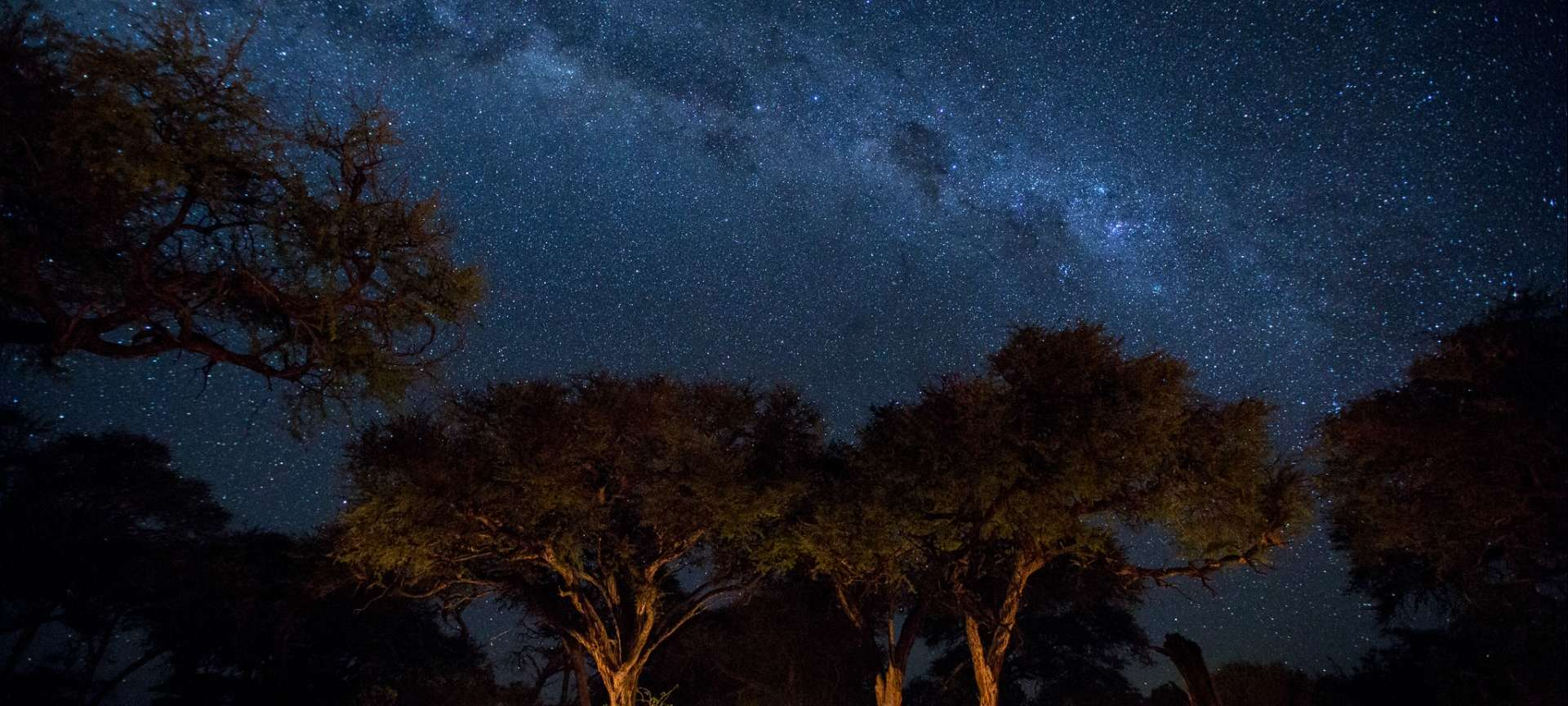 A night sky view of Botswana