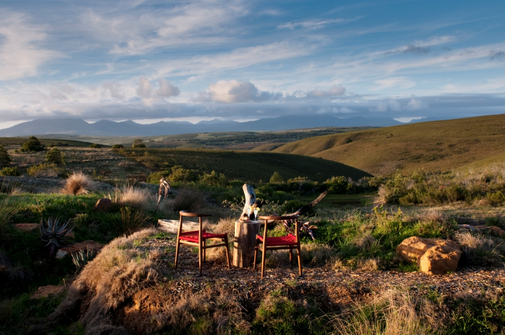 Lodges in South Africa: The dos and don'ts_Gondwana Game Reserve