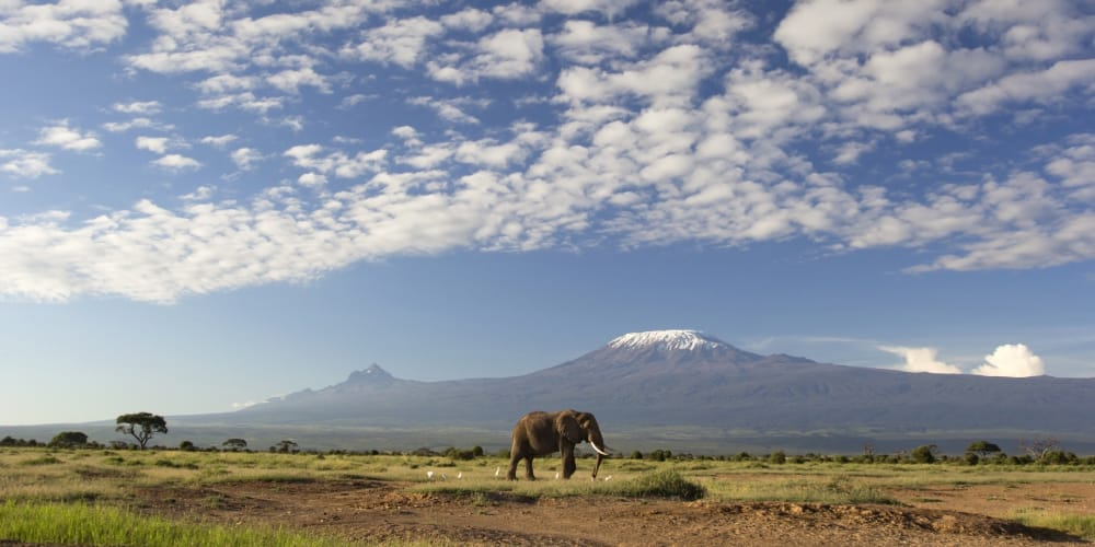 climbing mount kenya view from amboseli national park