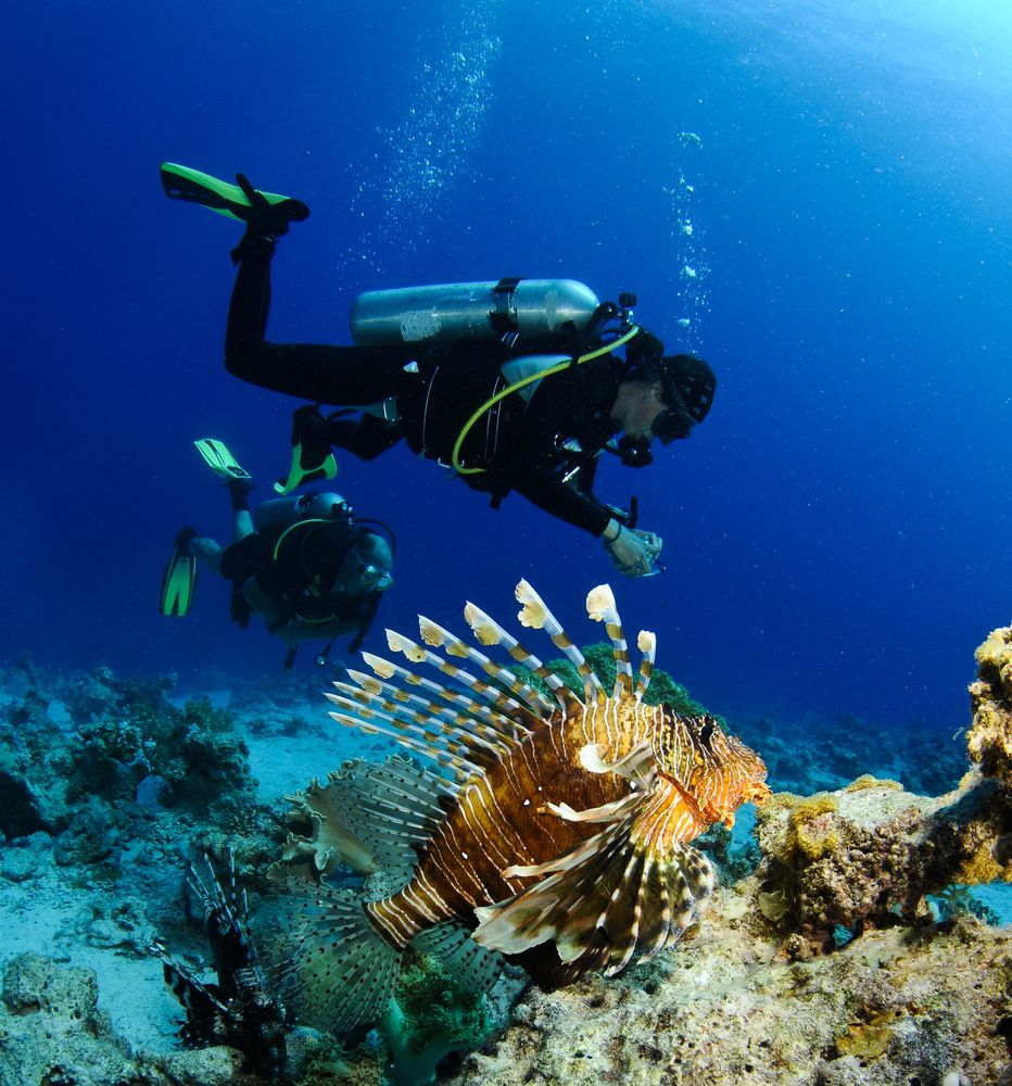Wasini Island_Diving_Kenya