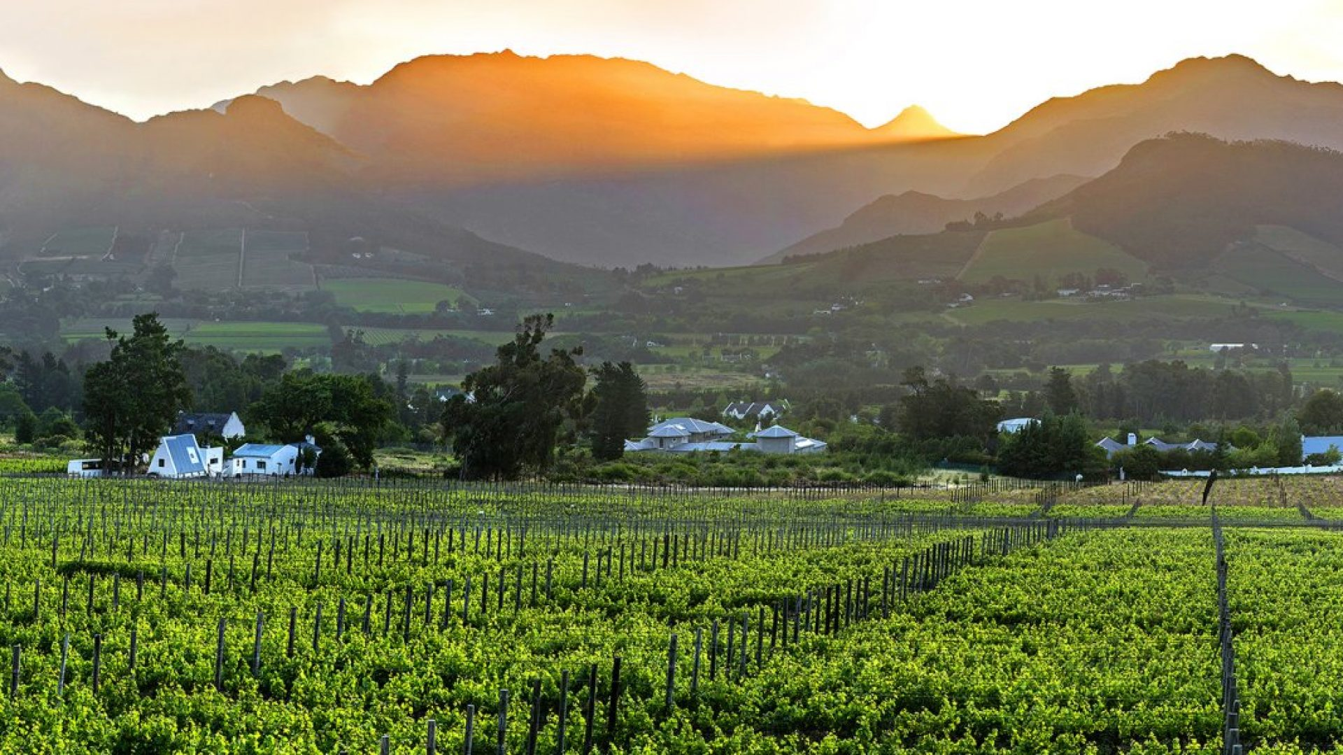 Stellenbosch and the Winelands_Franschhoek