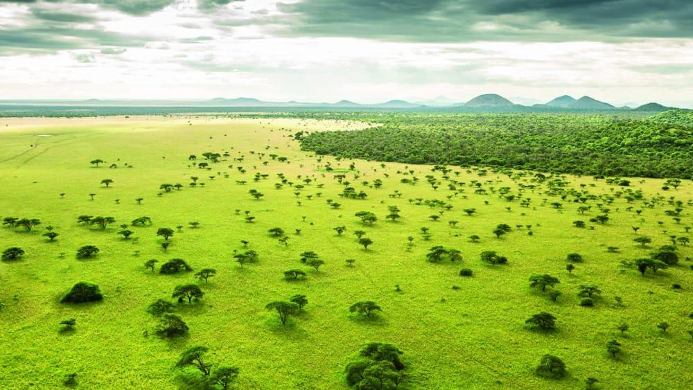 green season safari masai mara
