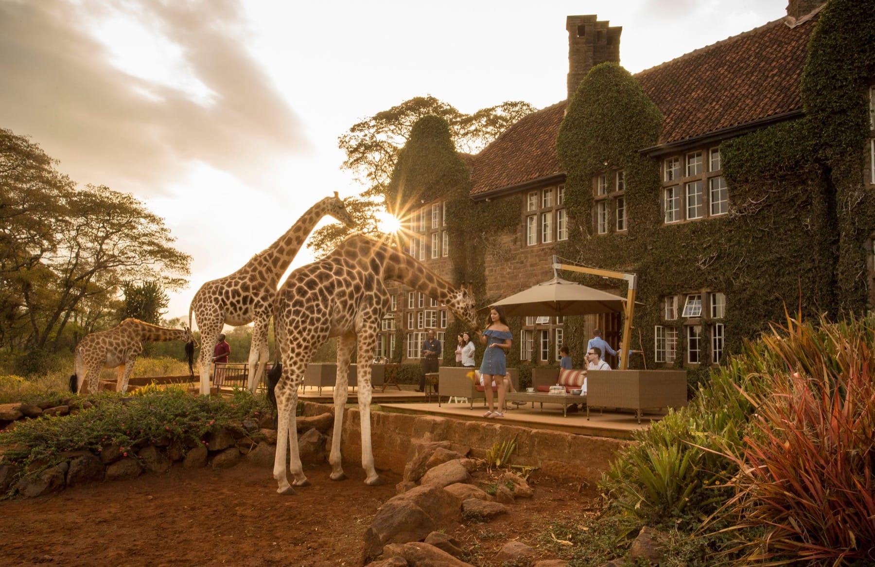 giraffe manor kenya accommodation
