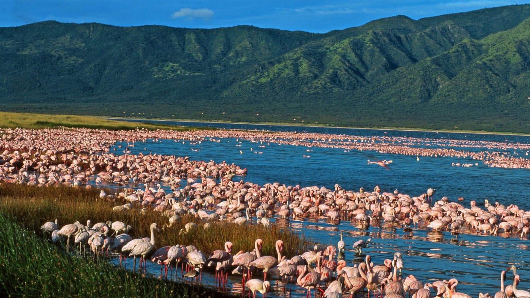 Lake Elmenteita_Kenya