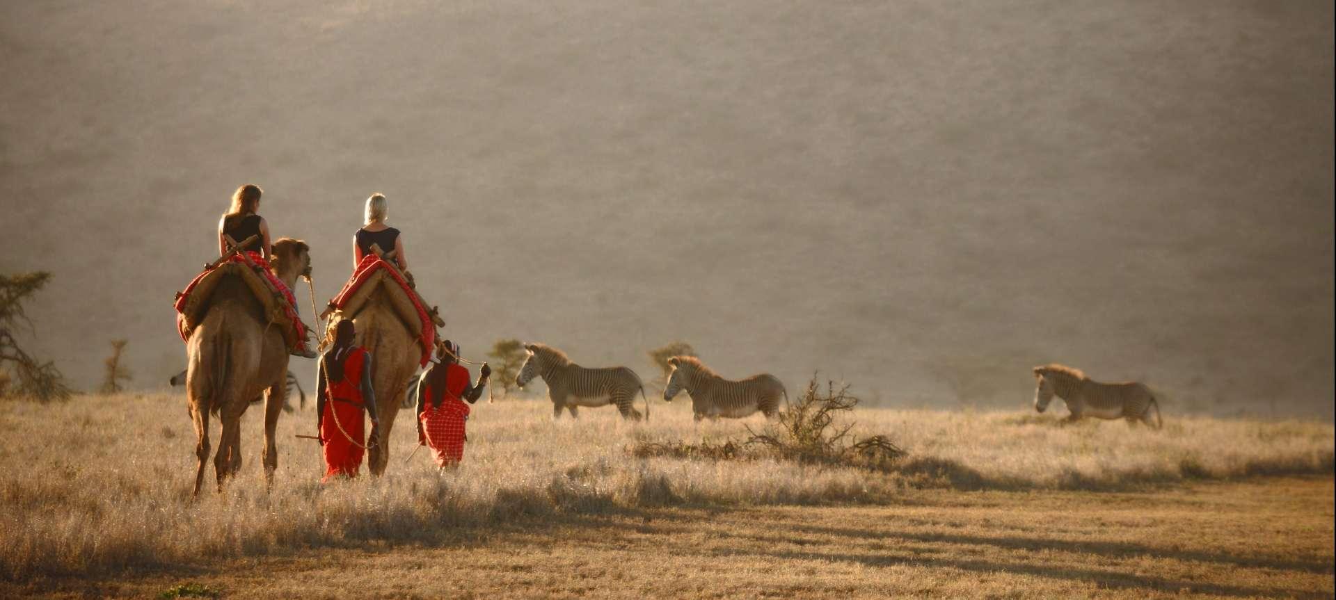 Elewana collection camel safari