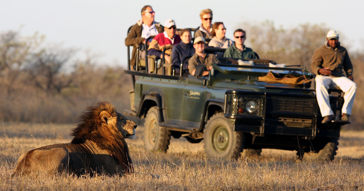 game drive in the kruger national park