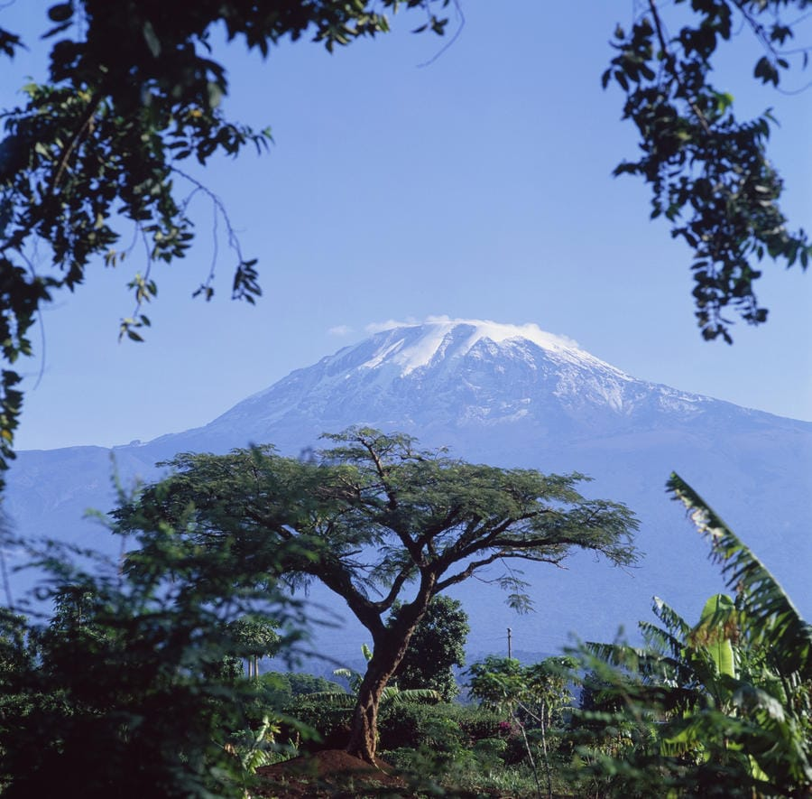 moshi in tanzania; the gateway to kilimanjaro