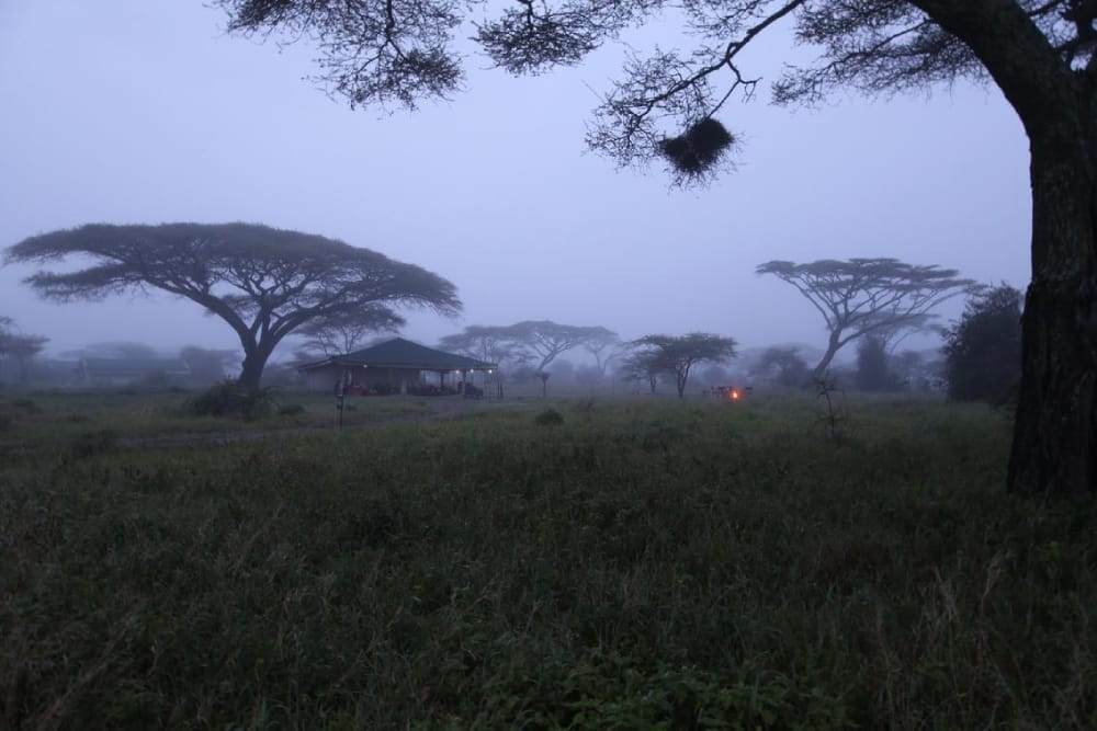 nasikia mobile camp mist in the serengeti
