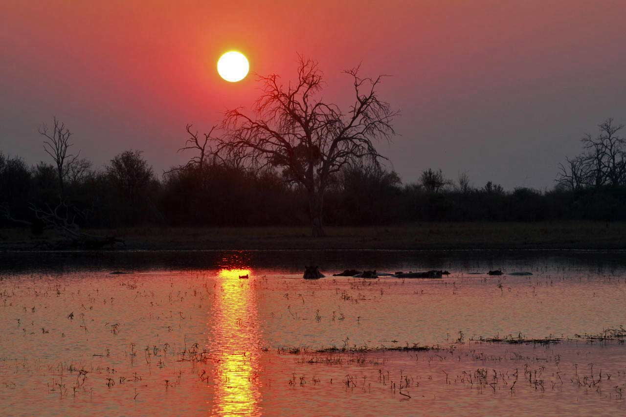 Nogatsaa is an off-the-beaten-path sweeping expanse of grasslands with mopane and deciduous woodlands