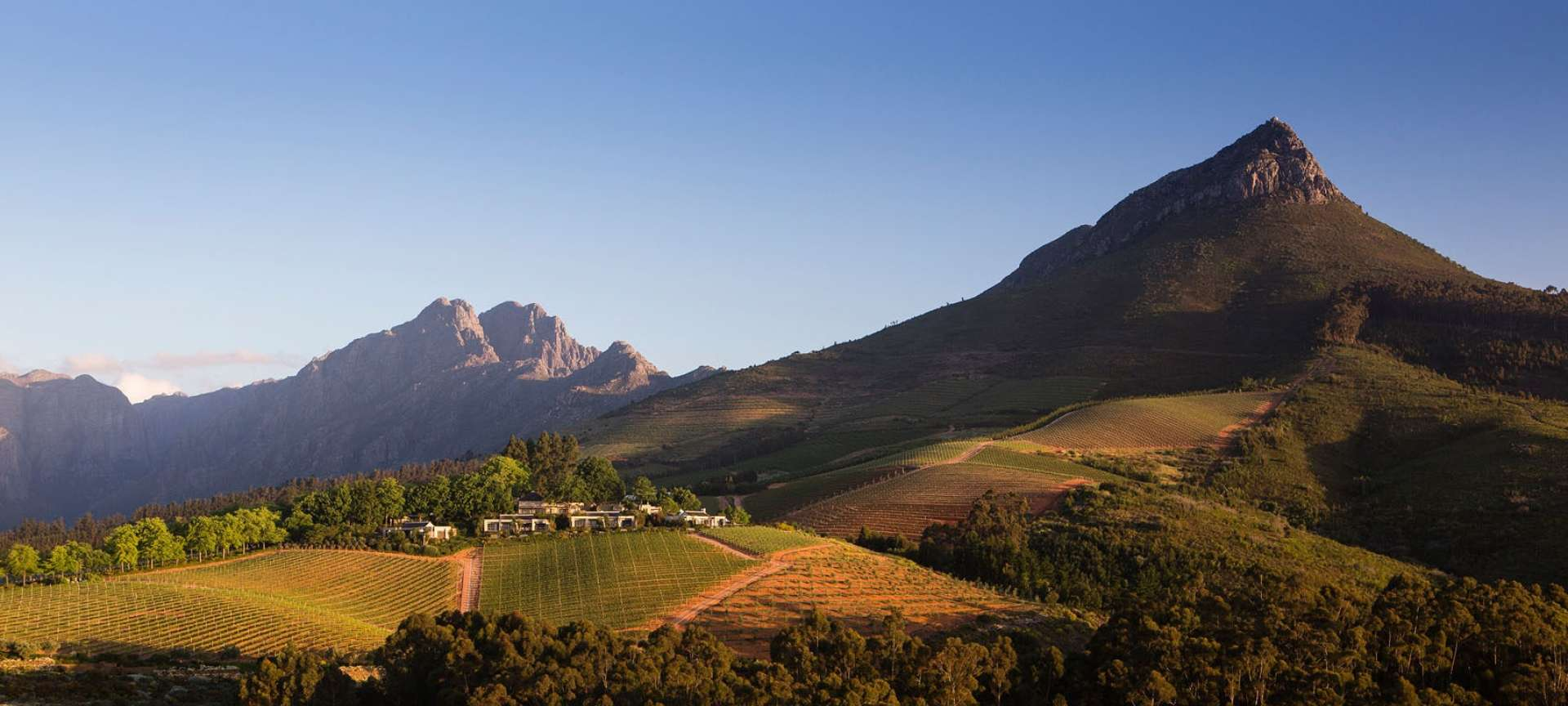 rsa winelands