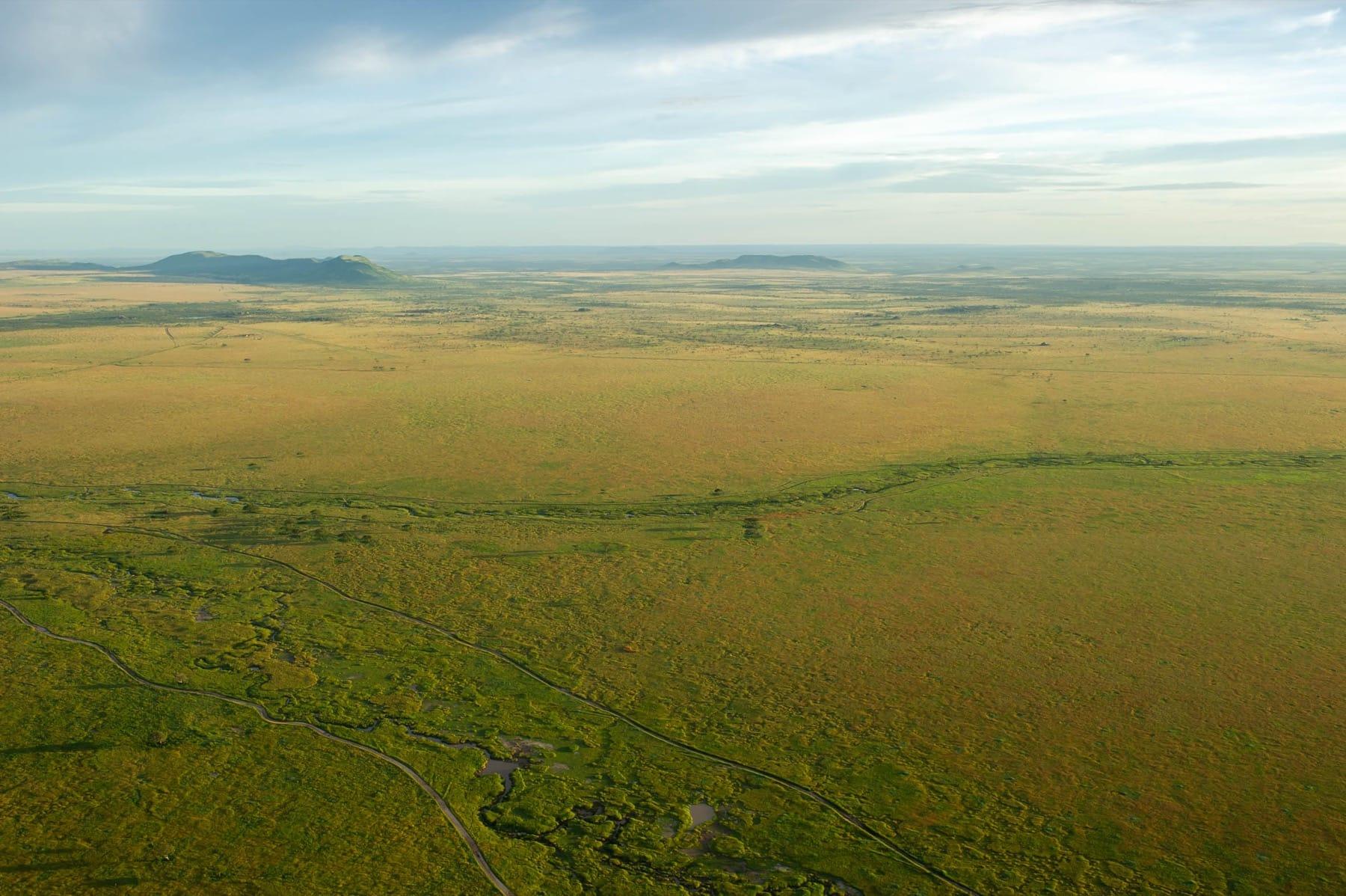 serengeti tanzania safari landscape green