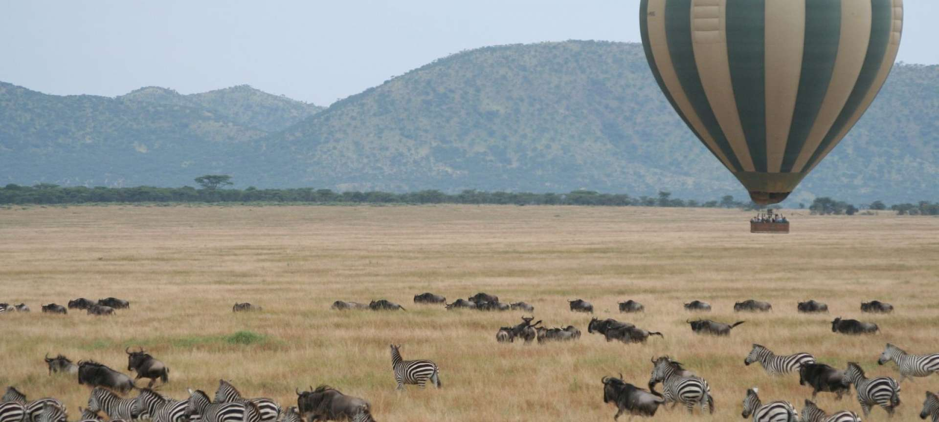 Hot air ballooning over the Serengeti can give you a new perspective
