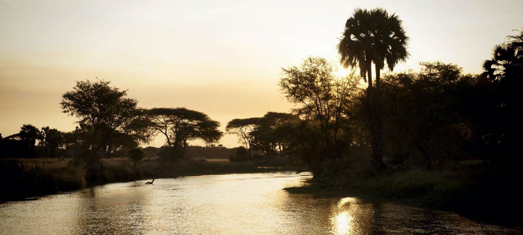 The Katavi region is aa pristine wilderness destination in Tanzania