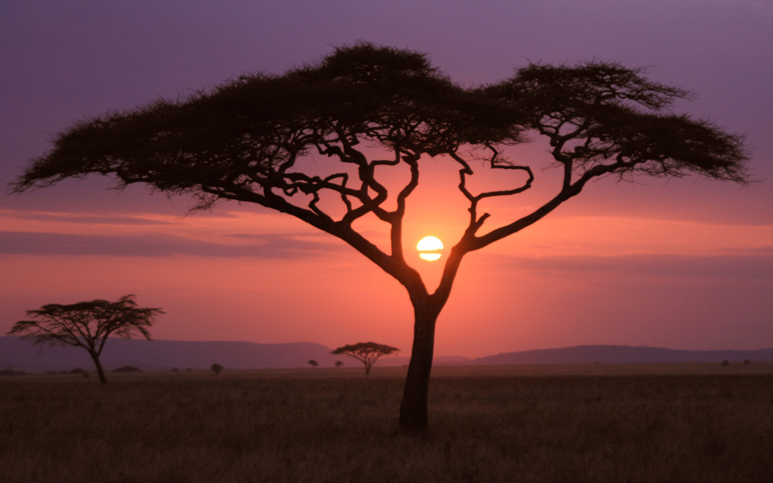 Few things can rival an African sunset