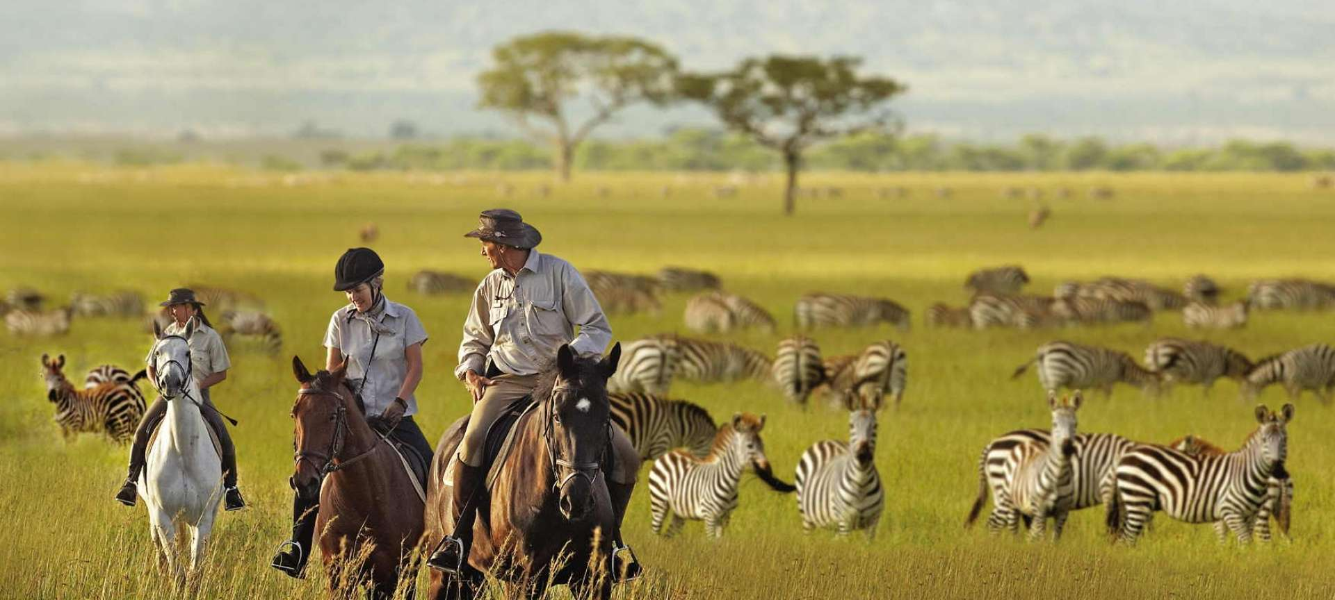 A horseback safari with your partner can make for a truly romantic time