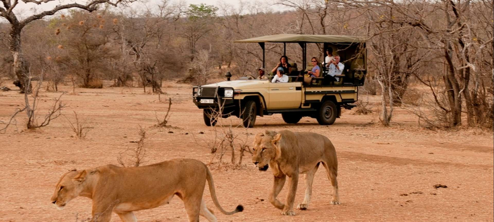 The Selous Game Reserve is one of the most enjoyed in Tanzania
