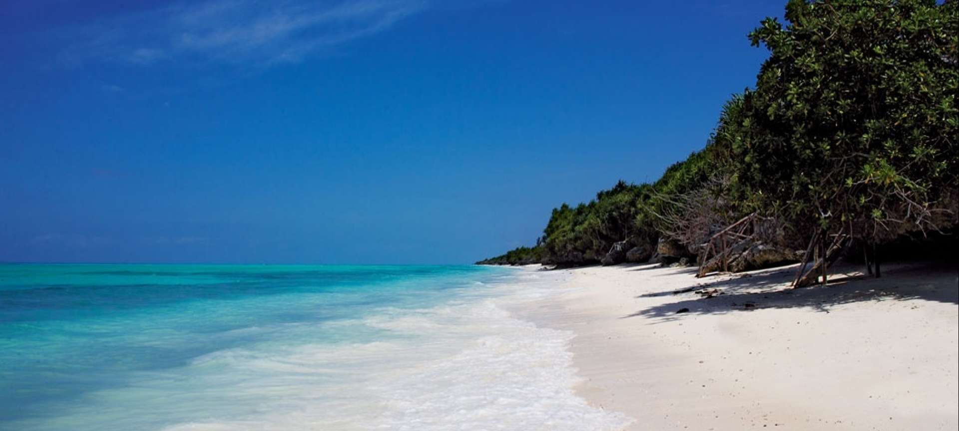 Zanzibar is the star attraction on the northern circuit