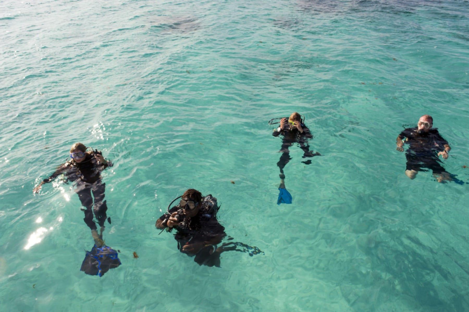 vamizi island scuba diving mozambique holiday