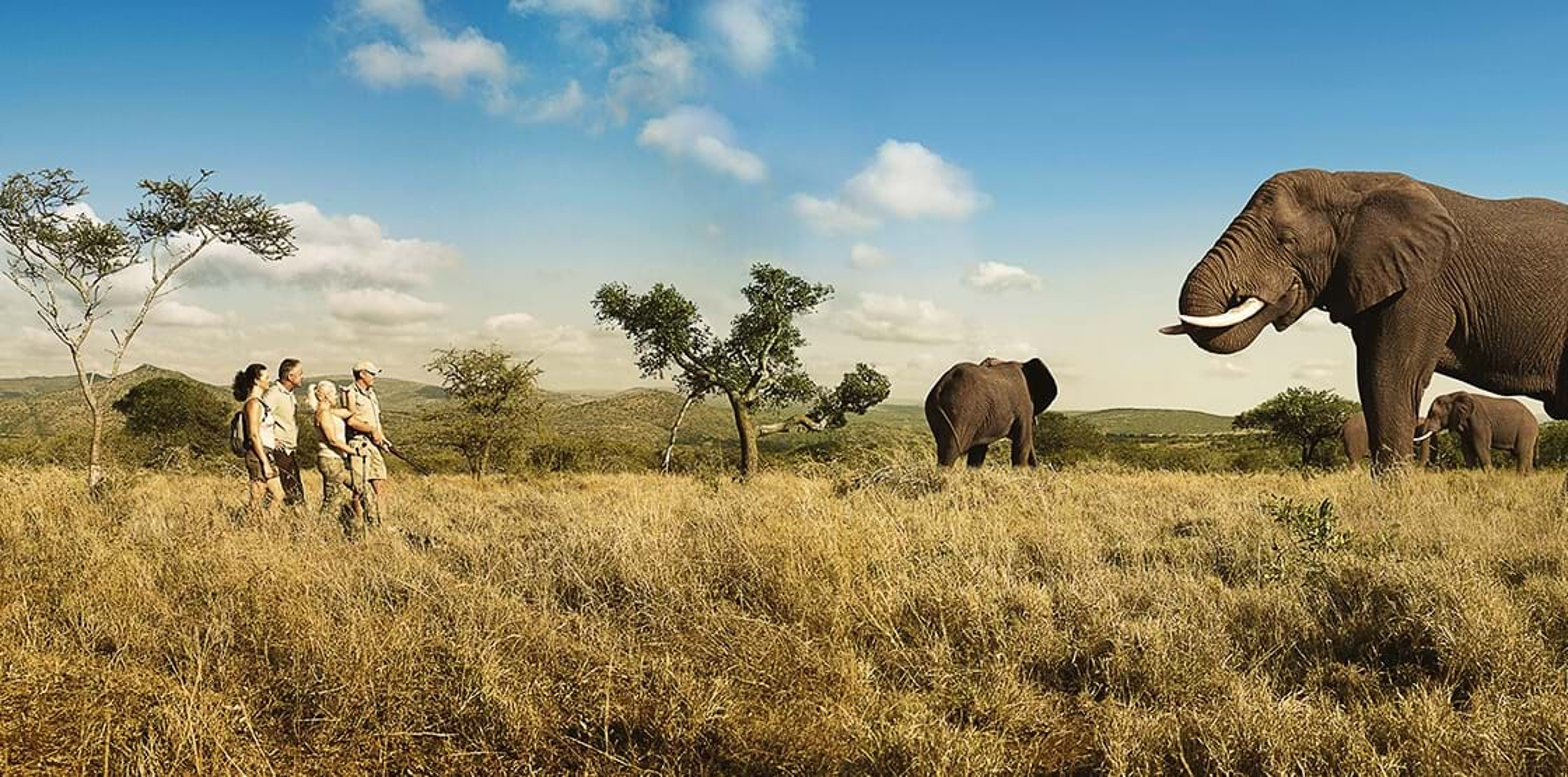 Walking safari holidays in South Africa