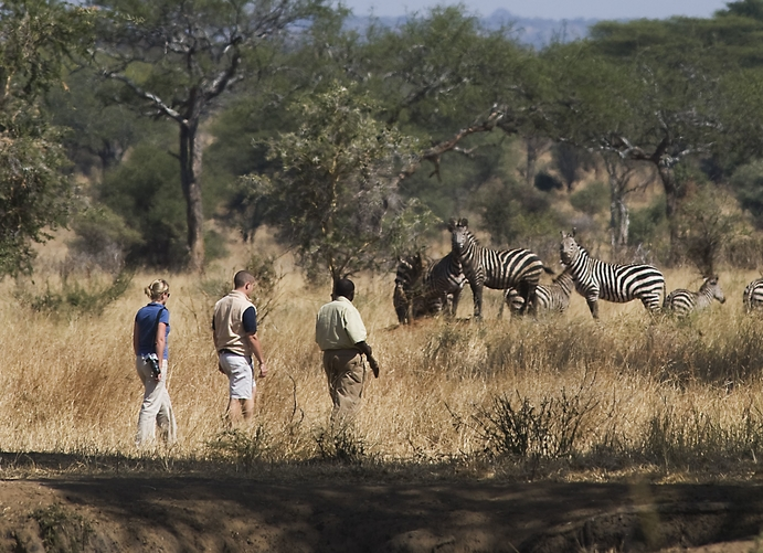 Walking safaris are a great way to meet the magic of the bush
