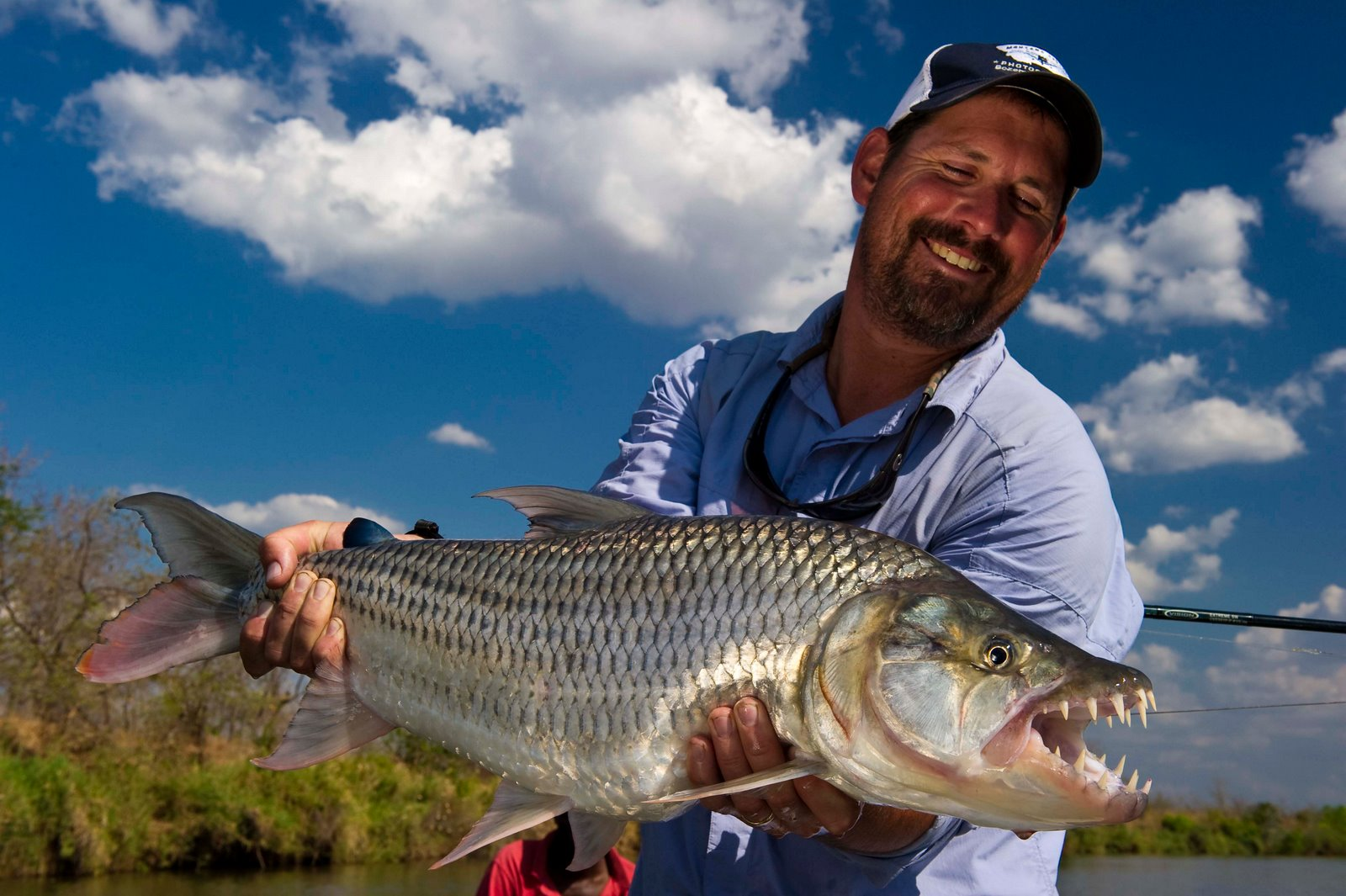 Tiger fishing is a drawcard for avid anglers