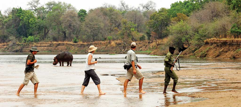 Walking safaris as a concept originated in Zambia, credit: Jobha Africa Safaris